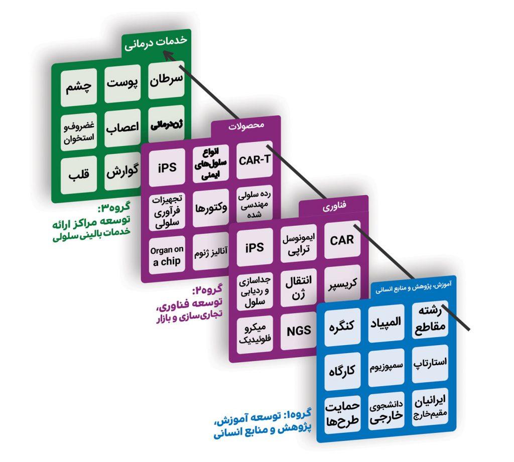 ساختار مرکز جامع سلول های بنیادی و پزشکی بازساختی کشوری